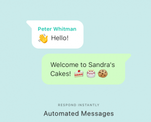 WA Business Auto Messages